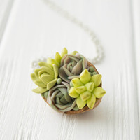 Green Succulent Necklace Pendant succulent plants Nut Shell Pendant Jewelry Succulent mother mom gifts