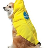 Rasta Imposta Chiquita Banana Dog Costume, X-Small