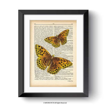 Butterfly print-Butterfly dictionary print-insect print-insect on book page-botanical print-home decor-butterfly decor-by NATURA PICTA-DP150