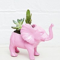 Urban Grow Elephant Planter in Pink - Urban Outfitters