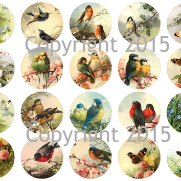 """Printed Vintage Victorian Catherine Klein Birds and Butterflies 1 3/4"""" Circles Collage Sheet"""