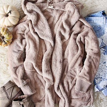 Softest Teddy Hoodie in Taupe