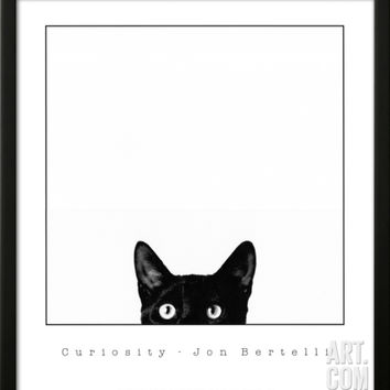 Curiosity Framed Art Print by Jon Bertelli at Art.com