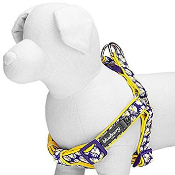 Blueberry Pet Soft & Comfortable Loving Floral Prints Adjustable Neoprene Padded Dog Harness, 2 Patterns, Matching Collar & Leash Available Separately