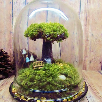 Tree of Life Terrarium Live Moss Raku Fired Tree in Jar with Glow in the Dark Mushrooms- Handmade