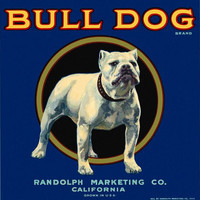 Bull Dog label poster