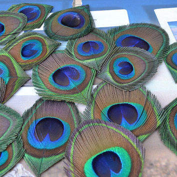 Free ship Hand-trimmed 100pcs/lot Peacock Eye feathers  for Wedding Party Event Christmas Decoration