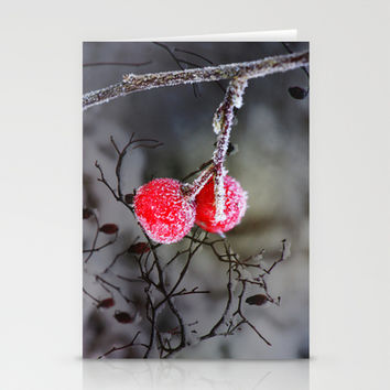 Frozen red berries Stationery Cards by LoRo  Art & Pictures