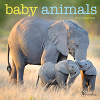 Baby Animals Mini Calendar