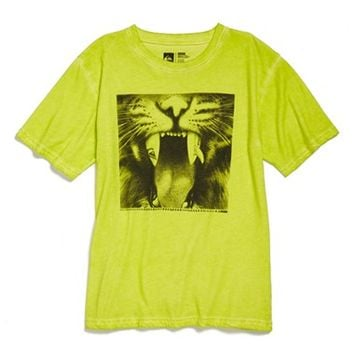 Boy's Quiksilver 'Javatiger - One of a Kind' T-Shirt