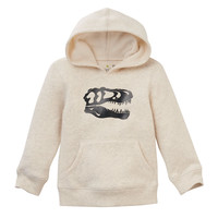 Toddler Boy Jumping Beans® Fleece-Lined Graphic Hoodie