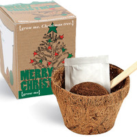 MERRY CHRISTMAS TREE KIT