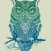 Warrior Owl Stretched Canvas by Rachel Caldwell | Society6