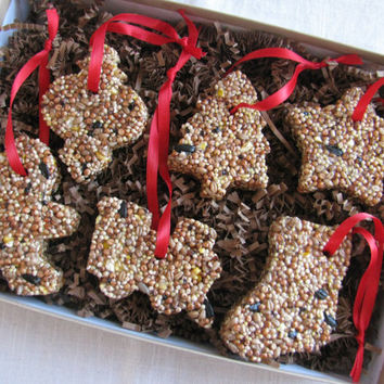 READY TO SHIP- Boxed set of 6 Holiday inspired bird seed ornaments