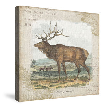 Woodland Stag II Canvas Wall Art