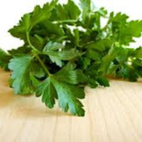 Parsley Italian Seeds, Excellent for Garnishments, 25 Seeds