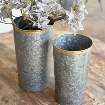 Set Of 2 French Buckets With Brass Rims