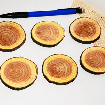 Wood Log Slices & Discs Round Oval Decorative Rustic Pyrography. Melia Chinaberry wood slices, ornaments, wood slabs, wooden. 100 % natural