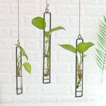 Creative Iron Glass Vase Living Room Wall Decorations Water Sprinkler Green Vegetables Container
