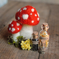 Gnome Apothecary, Set of Healing Herbs, Needle Felted Red Mushrooms