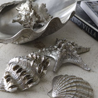 Sea Life in Clam Shell Tray Table Decor