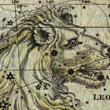 Leo Constellation, Astronomy, Astrology, Zodiac, Canvas