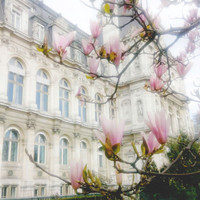 Paris in Spring Fine Art Photography Print