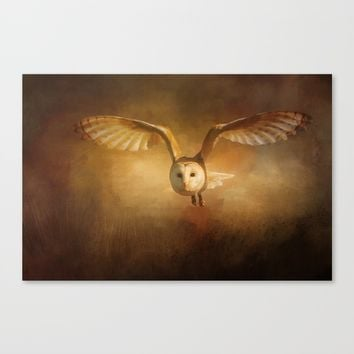 Night Raptor - Barn Owl Canvas Print by Theresa Campbell D'August Art