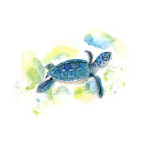 Baby Sea Turtle Portrait