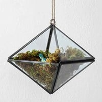Geo Triangle Hanging Terrarium- Clear One