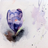 Crocus snowy watercolour print spring purple 5 x 8