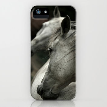 white horse iPhone & iPod Case by mexi-photos