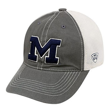 """Michigan Wolverines NCAA Top of the World """"Putty"""" Stretch Fit Mesh Back Hat"""