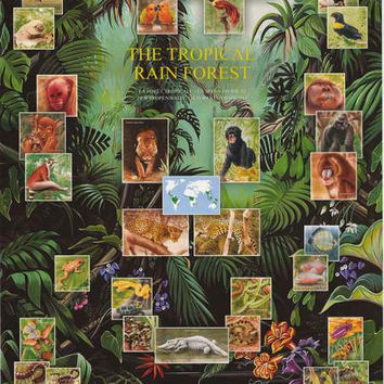 Tropical Rainforest Animals Poster 27x39