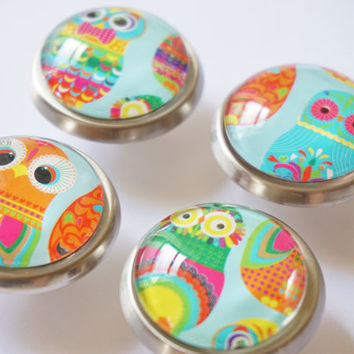 Colorful Owl Knobs- Brass or Brushed Nickel