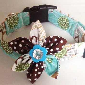 Aqua and Brown Collar with Matching Flower for Female Dogs and Cats