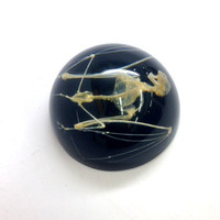 Bat Skeleton Paperweight