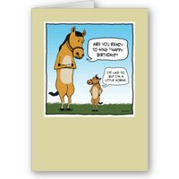 Funny birthday card: Little Horse from Zazzle.com