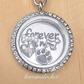 Dog Memorial Locket, Dog Loss Necklace, Pet Loss Locket, Pet Memorial Locket, Dog Memorial Gift, Pet Memorial Gift, Pet Loss Gift, In Memory