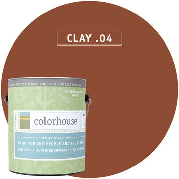 Paint by Colorhouse CLAY .04
