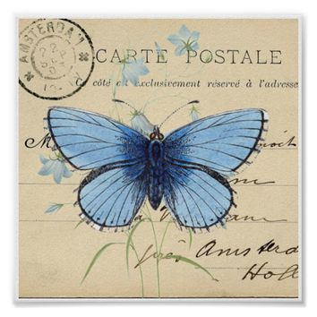 Vintage Blue Butterfly French Postcard Art Print