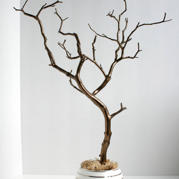 Jewelry holder organizer tree bronze and from for Tree branch jewelry holder