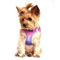 American River Choke - Free Dog Harness