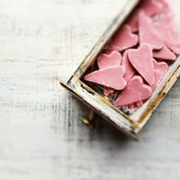 Rustic wedding favors hearts magnets cottage chic guest favors shabby chic bridal shower pale pink white grey salmon pink puce mauve