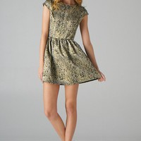 Jacquard Fit and Flare Dress (Black)