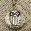 Steampunk  Owl 61501  Locket Necklace Vintage Style by sallydesign