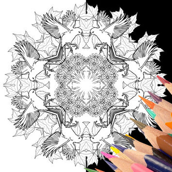 Mandala Coloring Pages Mehndi Henna, Set of 2 Black and White Printable Bird Flower, Instant Digital Download, Adult Color Page Advanced