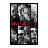 Sons Of Anarchy Domestic Poster