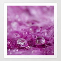 Drops in feathers Art Print by vanessagf