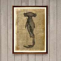 Hammer fish print Nautical decor Sharks poster Dictionary page WA591